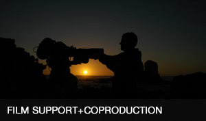 4.FILM_SUPPORT+COPRODUCTION-OK