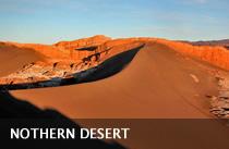 desert-OK